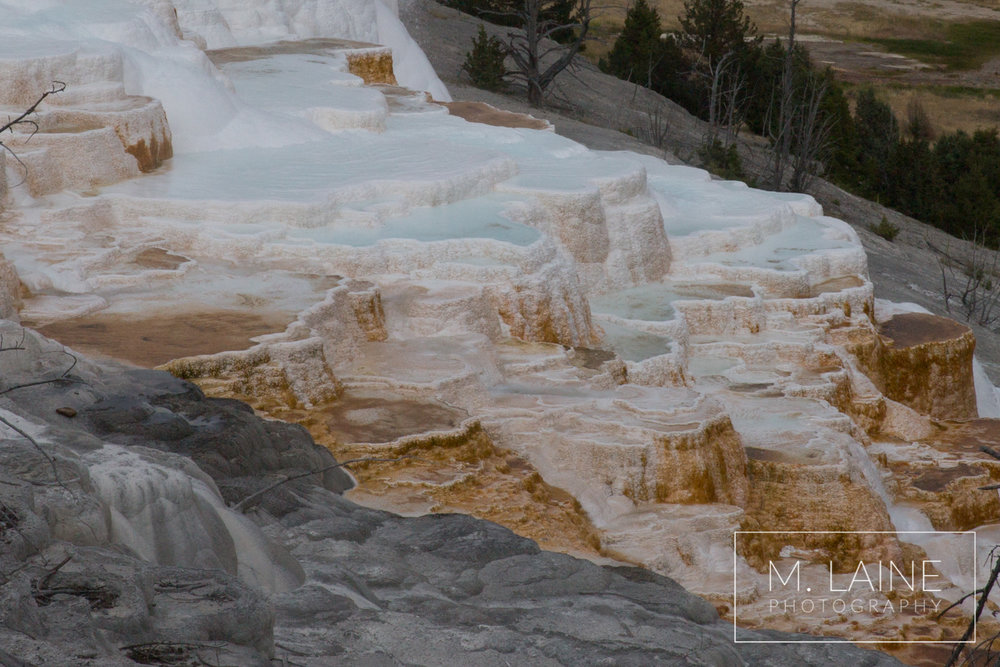 Yellowstone-1818.jpg