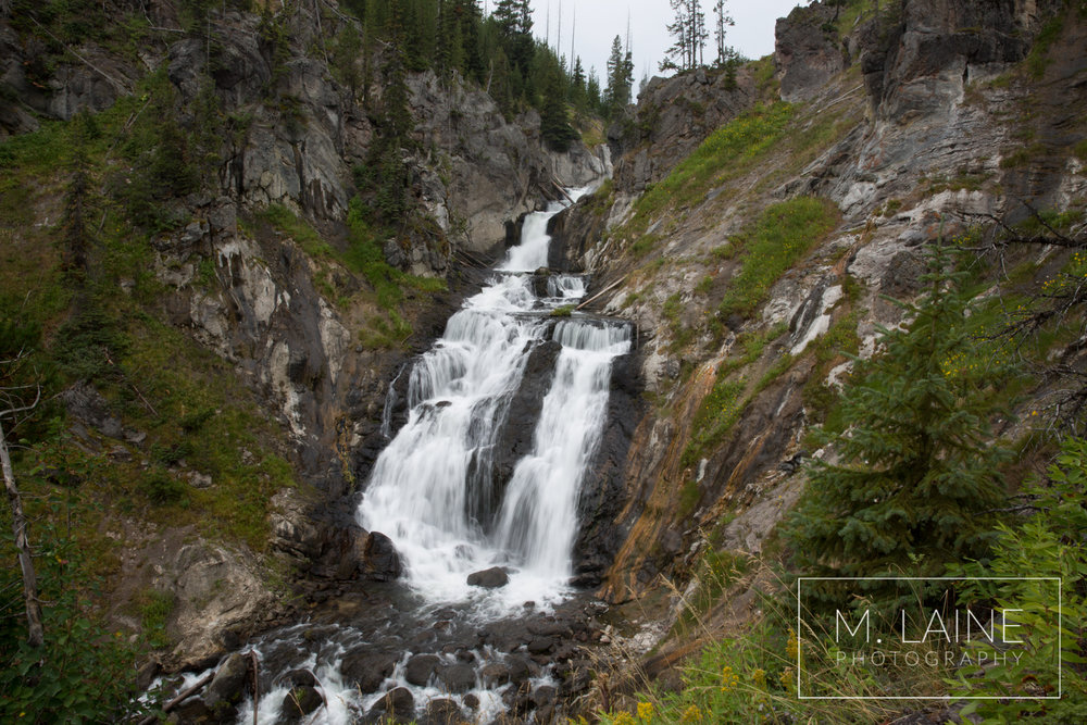 Yellowstone-2147.jpg