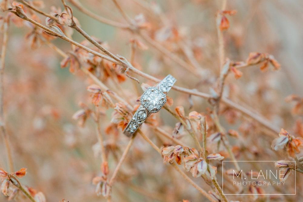 Palouse-Tacoma-Engagement-Photographer-5251.jpg