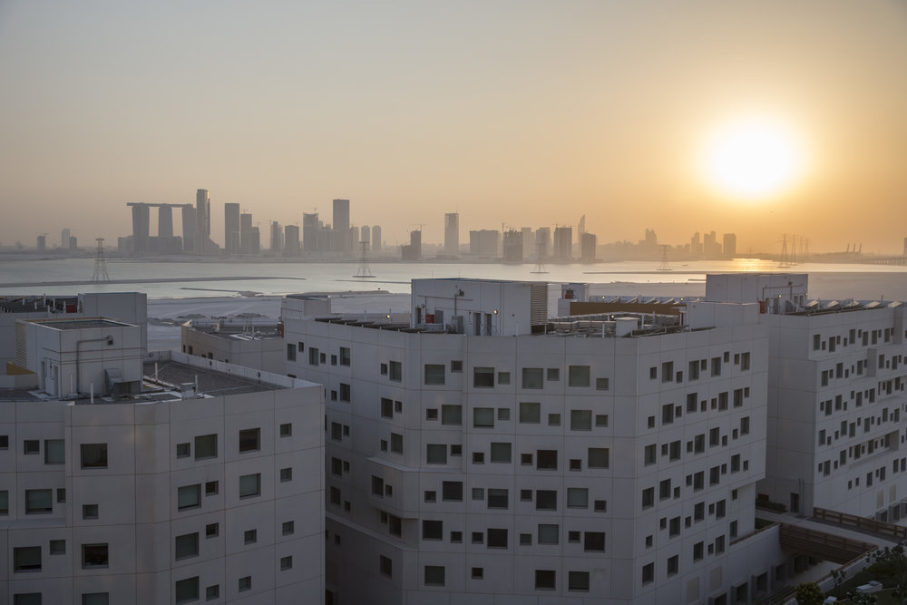 NYU Abu Dhabi. Photo: Silvia Razgova.
