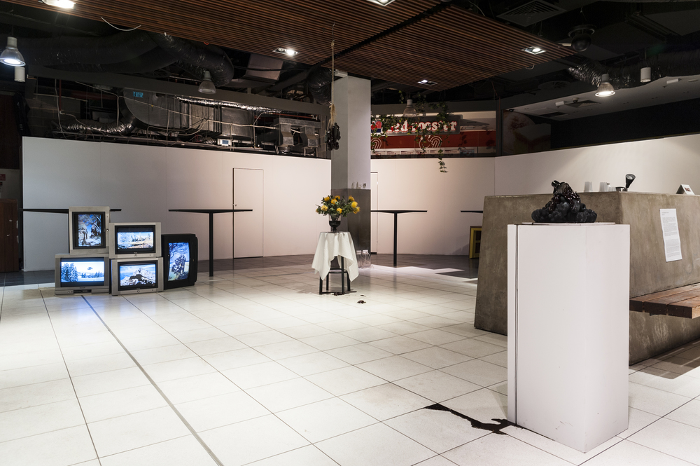 Installation view at The Food Court,  Siying Zhou  , The Consequences of Success , Dec 2014 –Jan 2015