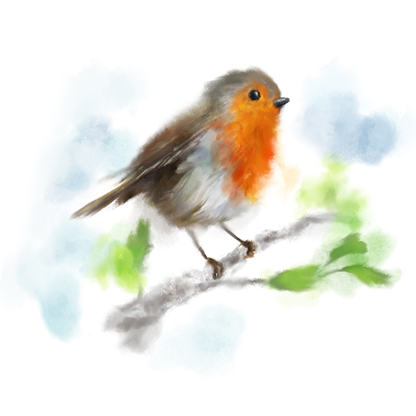 'Robin' from £12