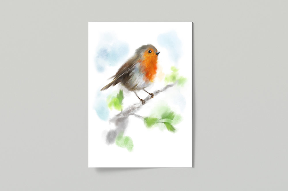 Robin Poster £25