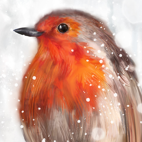 """""""It will be treasured""""★★★★★ - I ordered the beautiful Robin picture, it arrived safely, very well packaged. I am extremely impressed by the service provided by Martha Bowyer Illustration. I love my picture and it will be treasured.— Jane B."""