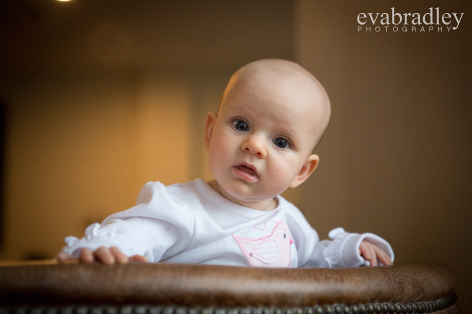 baby-photographer-hawkes-bay (4)