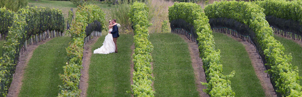 Black Barn Winery wedding