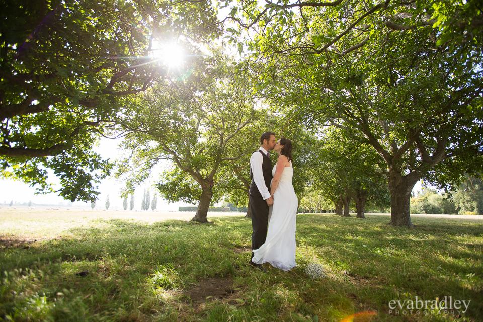 Napier wedding photographers
