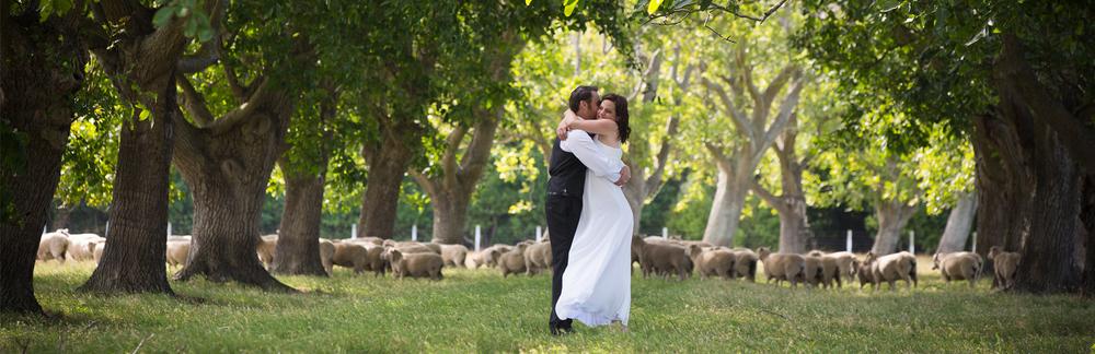 hawkes-bay-weddings