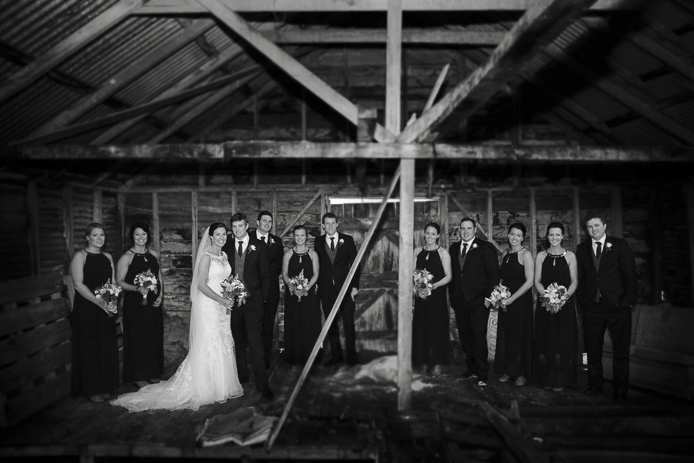 napier wedding photographers