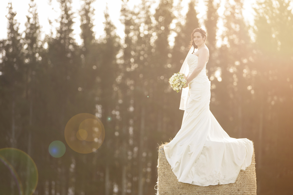 best wedding photographers hawkes bay 1