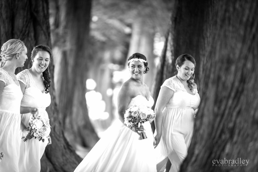 napier-wedding-photographers-nz