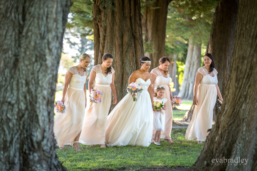 hawkes-bay-wedding-photographers-nz