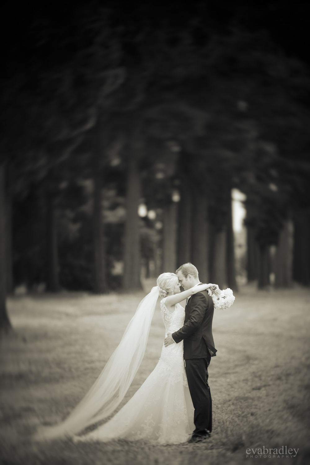 wedding-photographers-nz