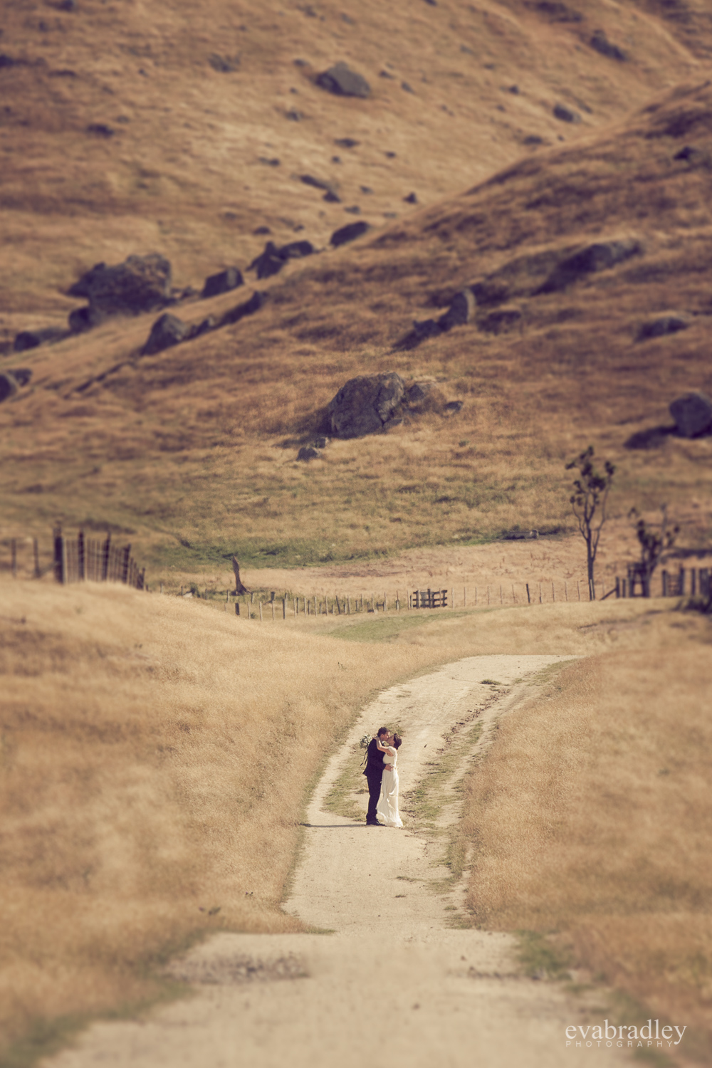 best-hawkes-bay-wedding-photographers-nz