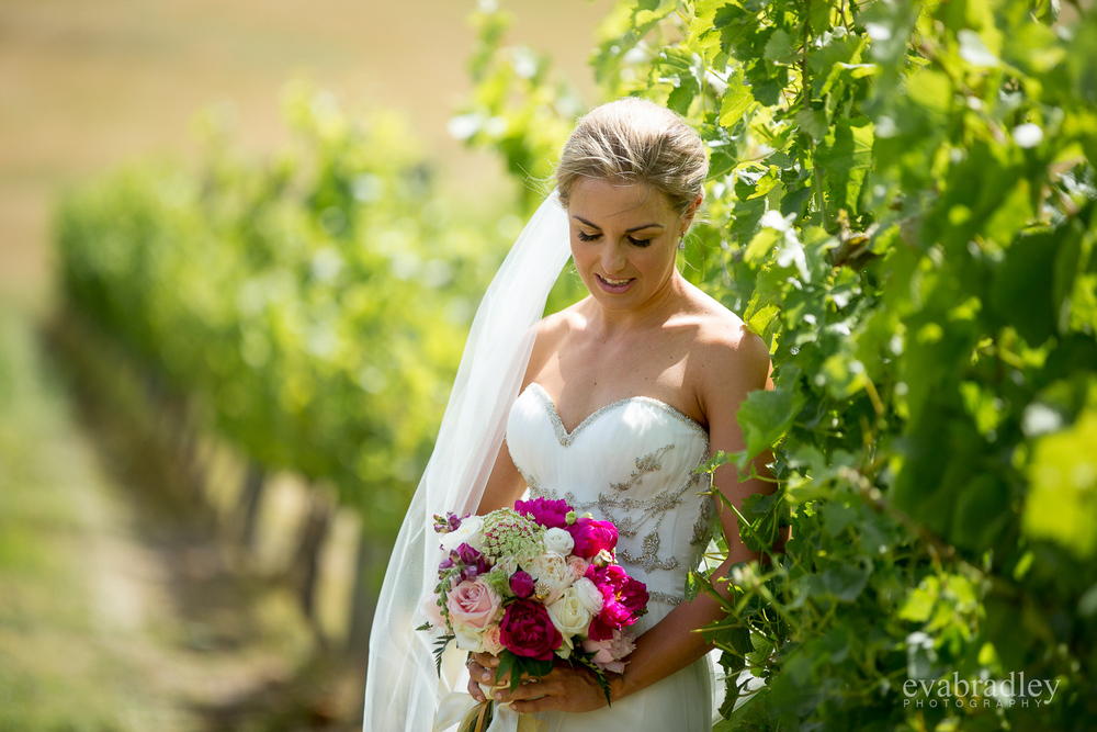 new-zealand-winery-weddings