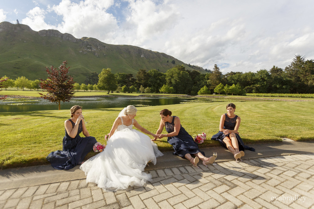 wedding venues hawkes bay