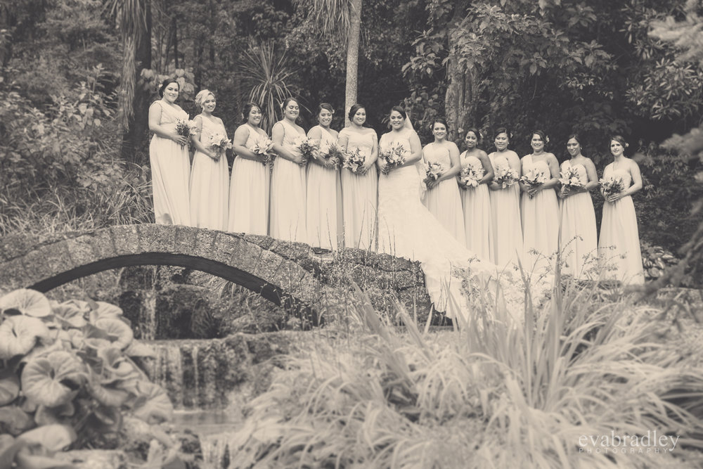 weddings-botanical-gardens-napier-nz