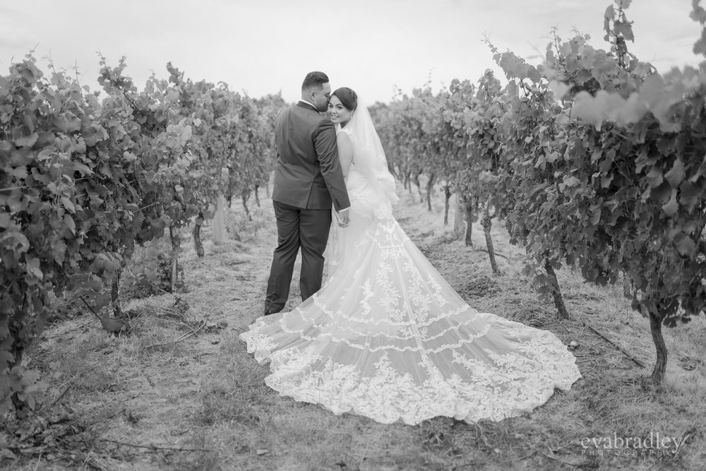 vineyard-weddings-hawkes-bay