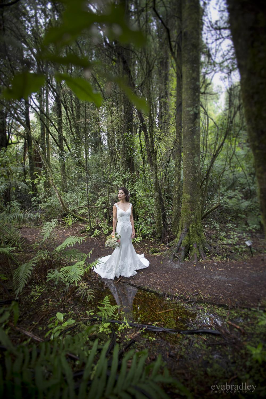 wedding-venues-lake-taupo