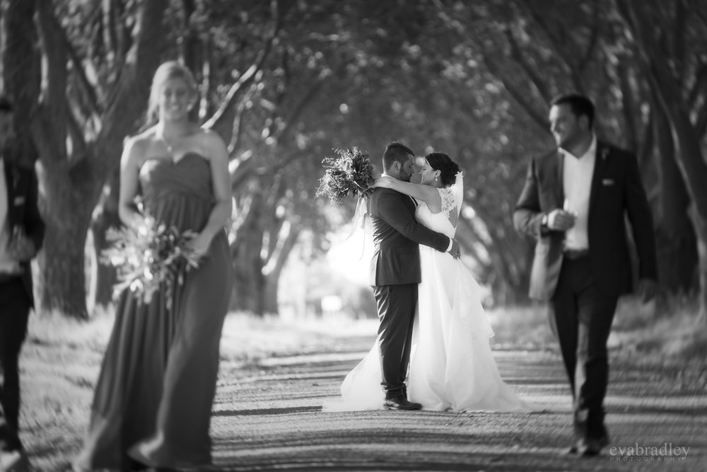 new-zealand-weddings-hawkes-bay