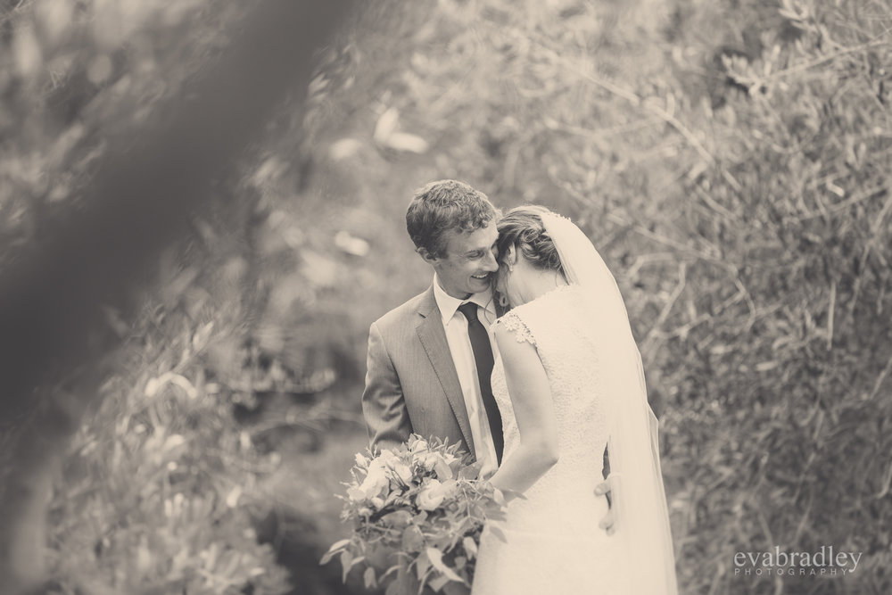 new-zealand-wedding-photographers