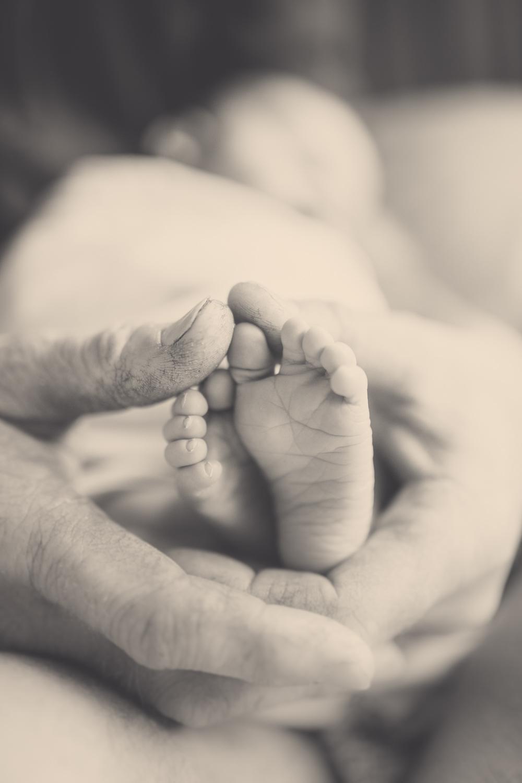 newborn-photographers-eva-bradley-michelle-fey