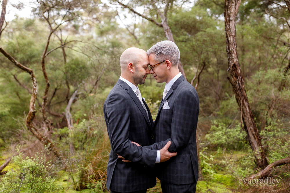 nz-gay-weddings