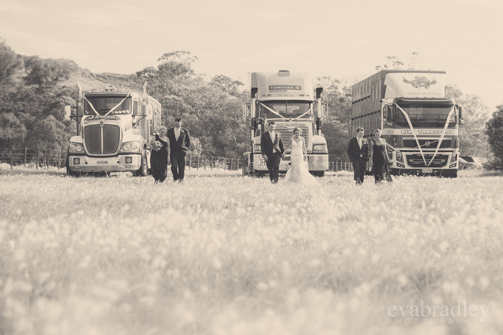napier-wedding-photographer