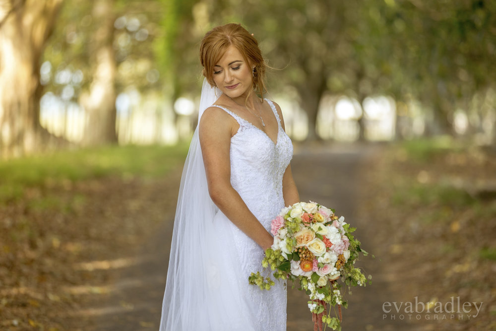 stella york wedding dress nz