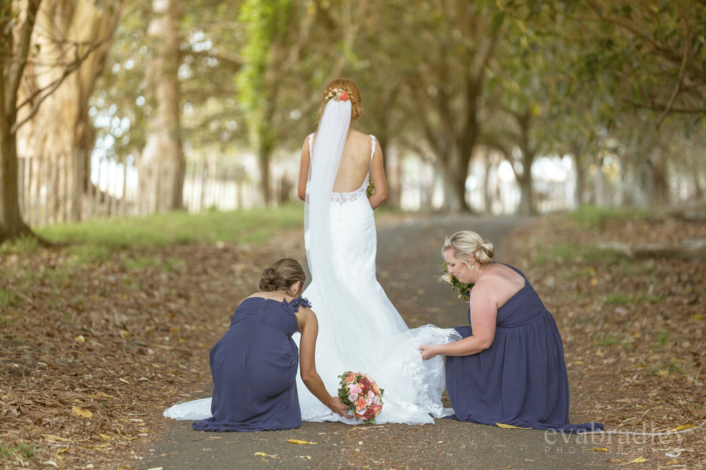 the bridal studio palmerston north