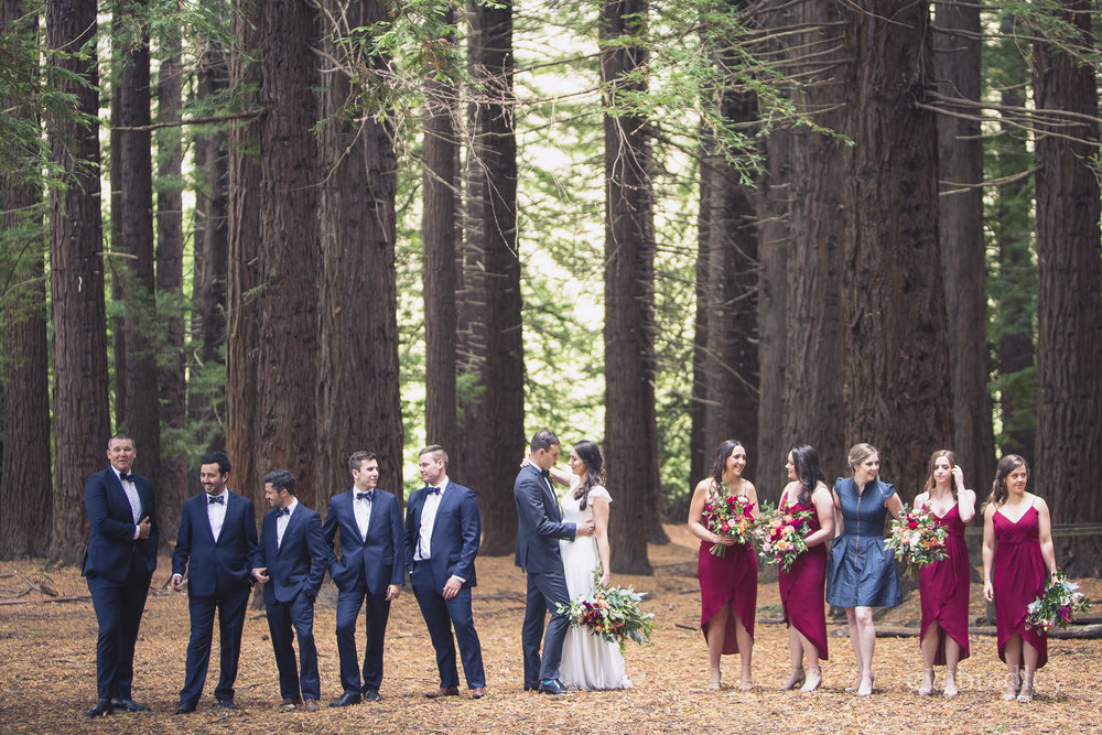 redwoods wedding havelock north