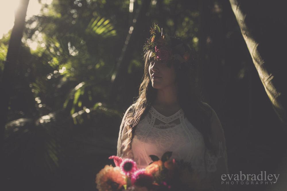 elopement wedding nz