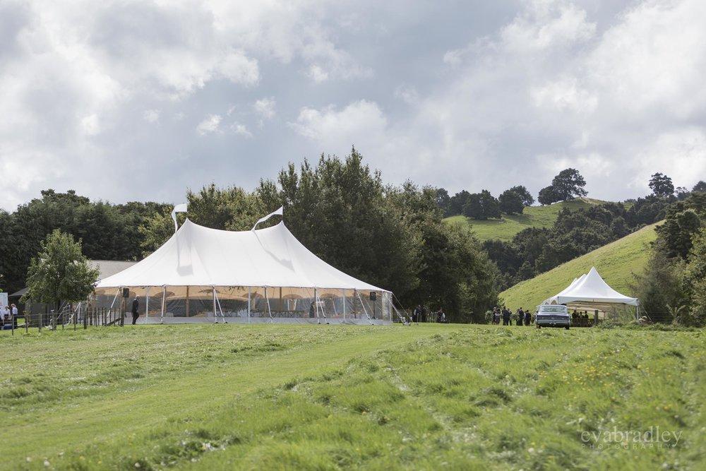 flagship events hawkes bay