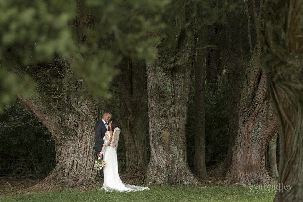 weddings hawkes bay eva bradley