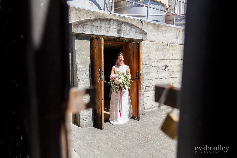 first look hawkes bay weddings