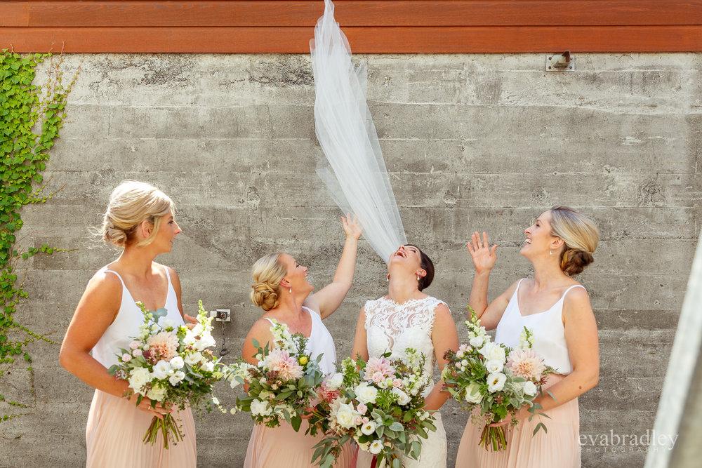 best wedding photographers hawkes bay