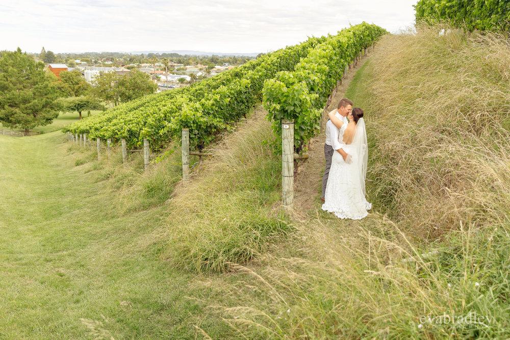 church road winery weddings eva