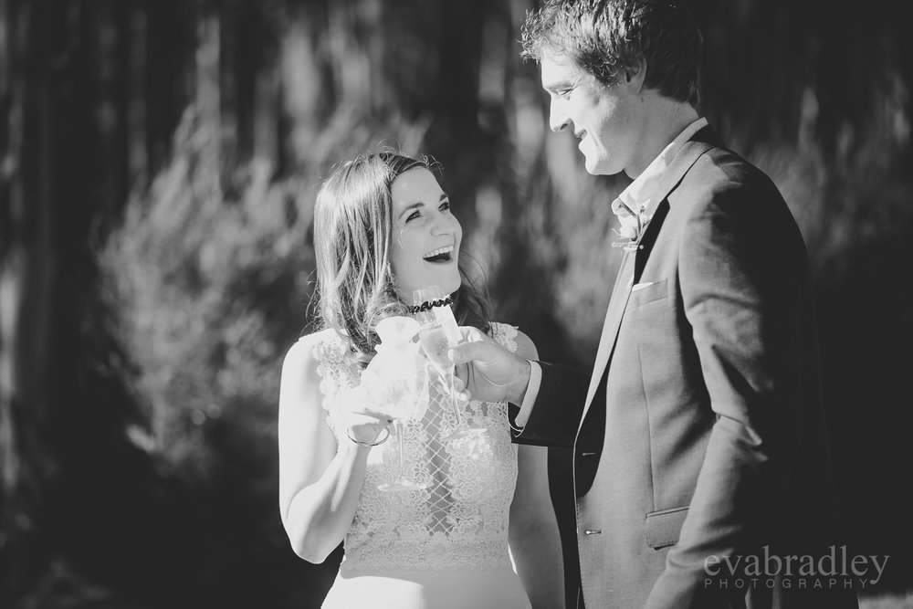 elopement weddings new zealand