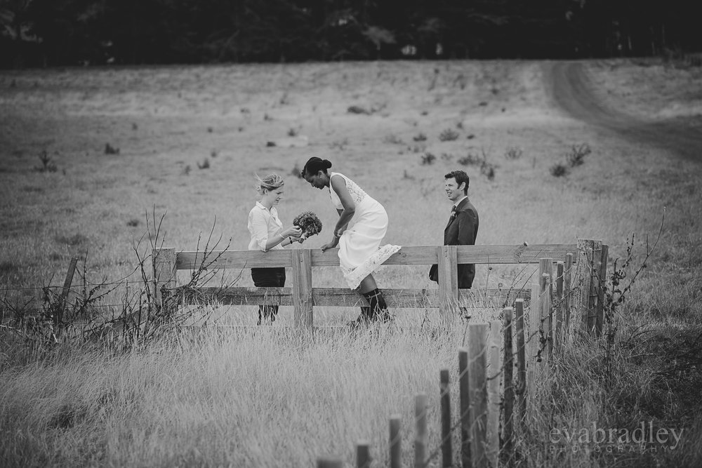 top-photographers-hawkes-bay