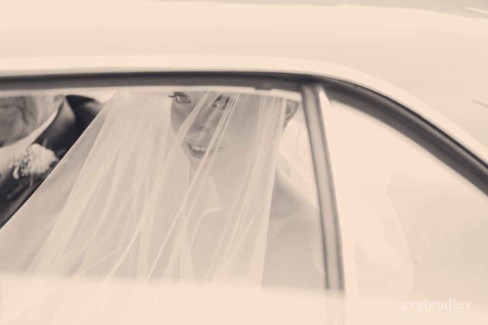 wedding-cars-hawkes-bay