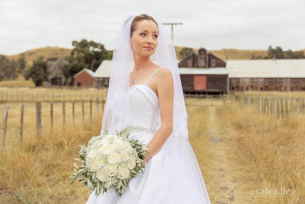 weddings-hawkes-bay-nz