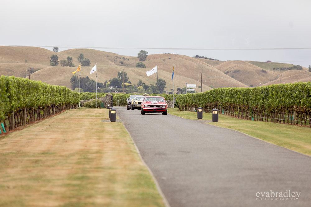 sileni-estate-winery-hawkes-bay-photographer