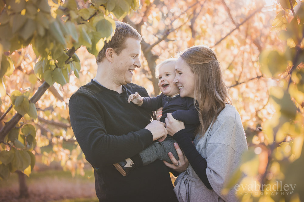 hawkes-bay-family-portrait-photographers