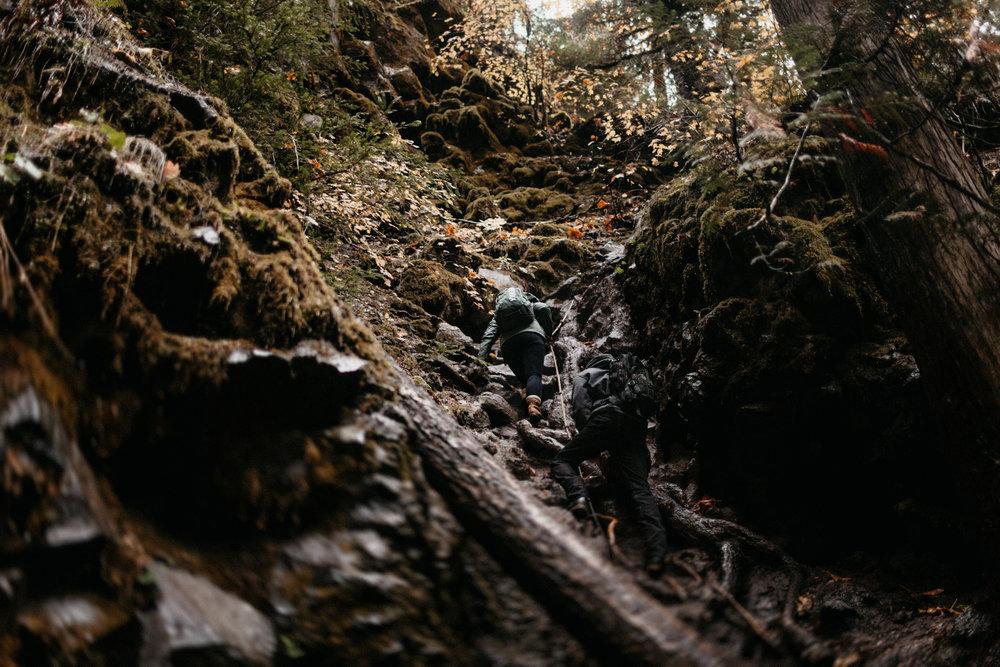 Toketee Falls Engagements by Kandice Breinholt-2.jpg