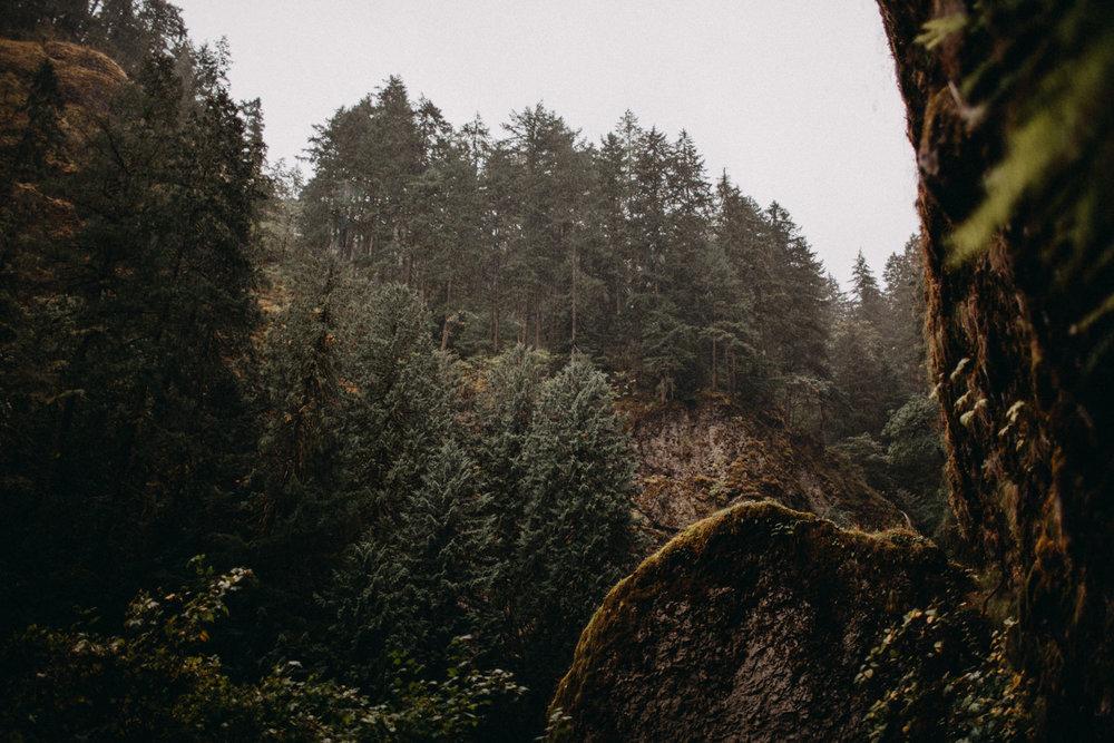 Wahclella-Falls-elopement-by-Kandice-Breinholt-63.jpg
