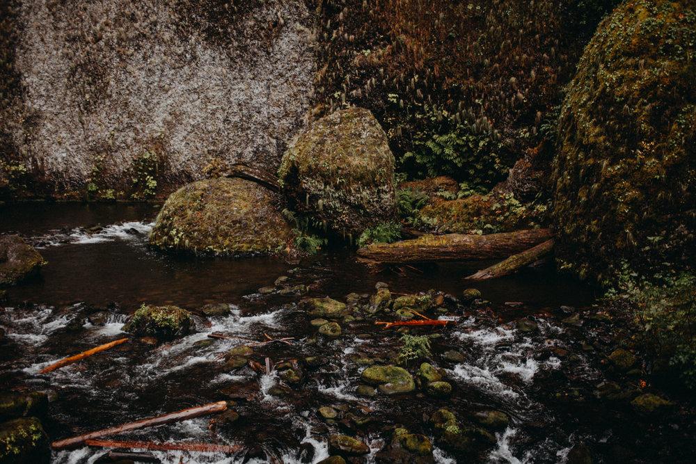 Wahclella-Falls-elopement-by-Kandice-Breinholt-71.jpg