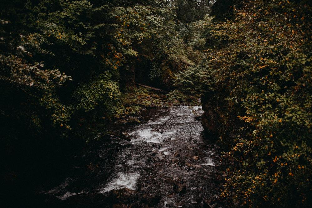 Wahclella-Falls-elopement-by-Kandice-Breinholt-81.jpg