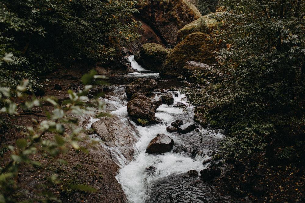 Wahclella-Falls-elopement-by-Kandice-Breinholt-107.jpg