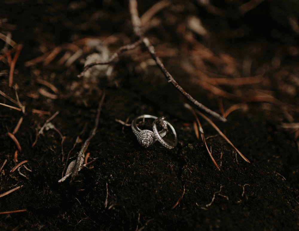 Moody images of wedding rings in the forest | Banff Elopement Photographer Kandice Breinholt