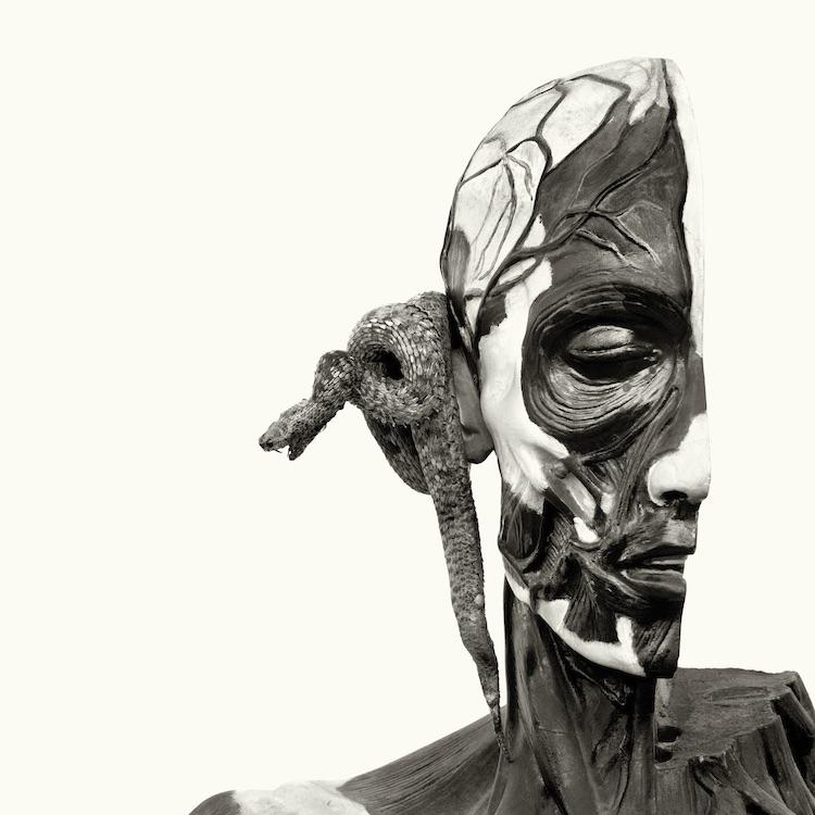 HEADS-17.jpg